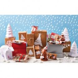 Pakket Kerstster