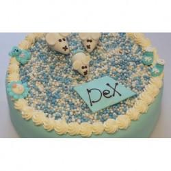 Geboorte beschuit taart jongen