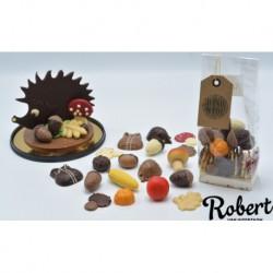 Herfst chocolade gesorteerd